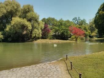 Englisher Garten Lake