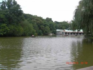 Lake in Central Park. Boat hire is also available