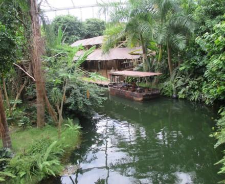Leipzig Zoo Gondwanaland Bootsfahrt Rainforest